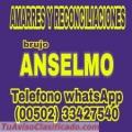 BRUJO ANSELMO... AMARRES Y RECONCILIACIONES (011502) 33427540